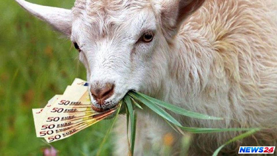 Siniša Mali čuva državnu kasu, kao koza kupus!