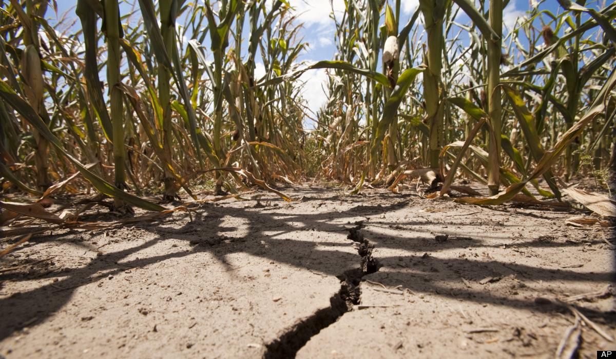 Dveri: 2017. se mora proglasiti godinom elementarnih nepogoda