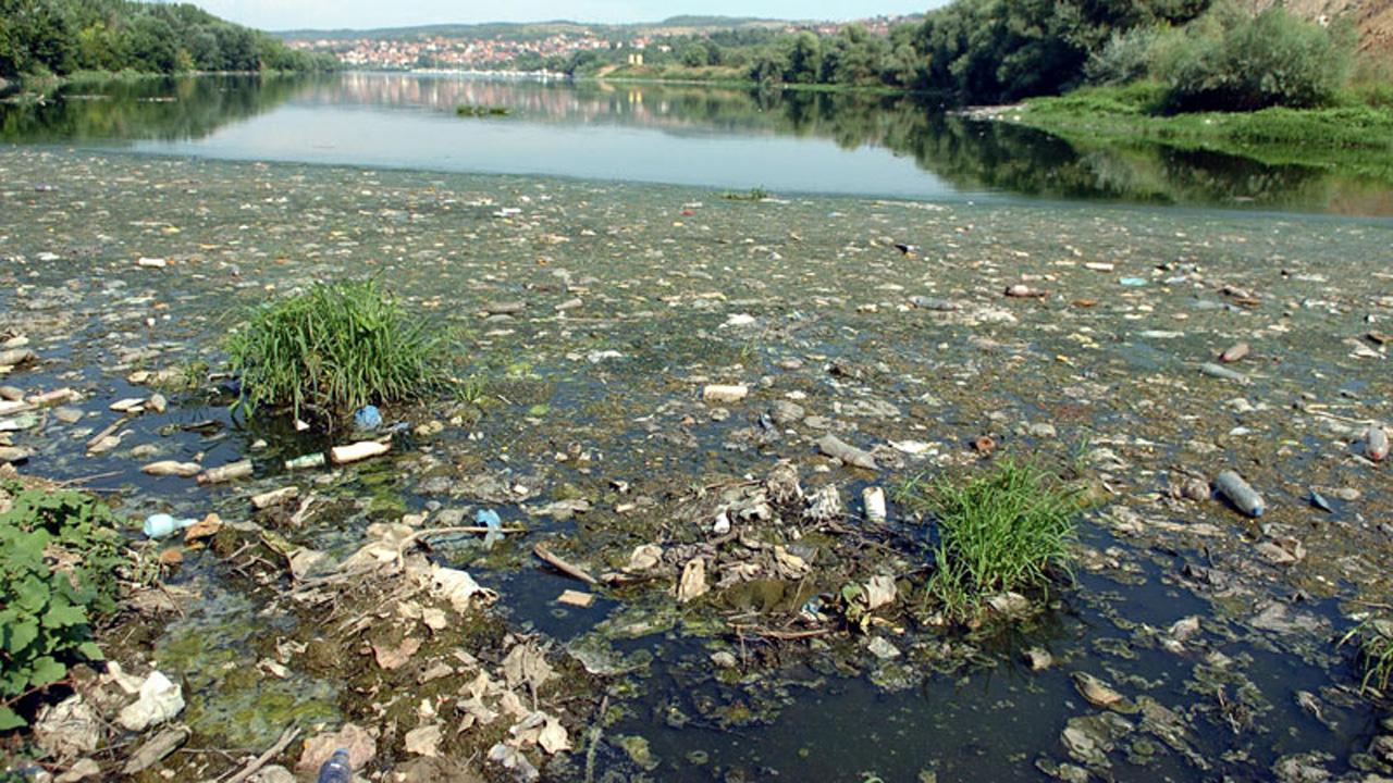Dveri Beograd: Nacionalni park prirode ili luka?